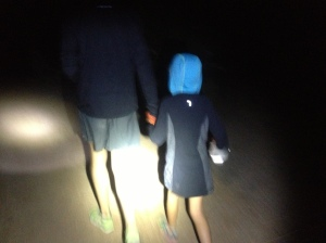 Holding hands with Daddy. I'm pretty sure it's the only way to walk through the night.